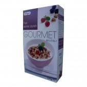 Мюсли Gourmet Bruggen лес. ягоды 375г