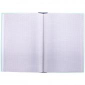 Книга учета 96 л., А4, клетка, картон, блок газетный