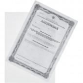 Папка-уголок , 150 мкм, прозрачный 10шт/уп Россия