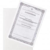 Папка-уголок 100мкм, мягкий пластик, прозрачная,  ст.1
